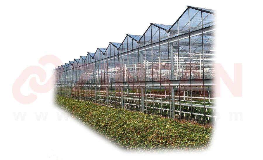 Glashausketten
